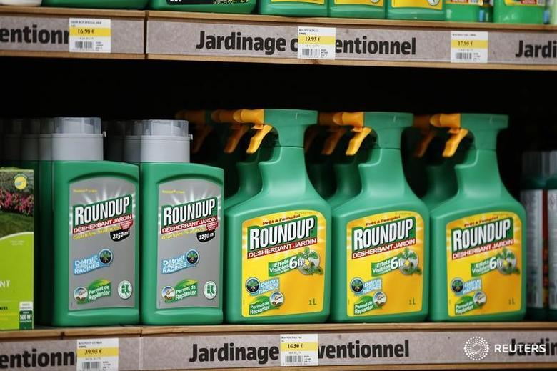 Monsanto's Roundup weedkiller atomizers are displayed for sale at a garden shop at Bonneuil-Sur-Marne near Paris, France, June 16, 2015. French Environment and Energy Minister Royal has asked garden shops to stop over-the-counter sales of Monsanto's Roundup weedkiller as part of a wider fight against pesticides seen as potentially harmful to humans.The International Agency for Research on Cancer (IARC), part of the World Health Organization (WHO), said in March that glyphosate, the key ingredient in Monsanto's Roundup was ''probably carcinogenic to humans.''     REUTERS/Charles Platiau - RTX1GPLU