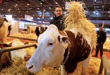 La Comisión Nacional de Mercados de la Competencia (CNMC) dijo el martes que obligar a los fabricantes de leche líquida envasada a declarar mensualmente datos sobre sus ventas podría mermar la competencia y no está contemplado en la normativa europea. En la imagen, un ganadero cuida a una vaca antes de una feria agroganadera e París, el 26 de febrero de 2016.   REUTERS/Jacky Naegelen