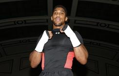 Boxing - Charles Martin & Anthony Joshua Public Work-Outs - York Hall, Bethnal Green - 4/4/16 Anthony Joshua during his work out  Action Images via Reuters / Peter Cziborra Livepic