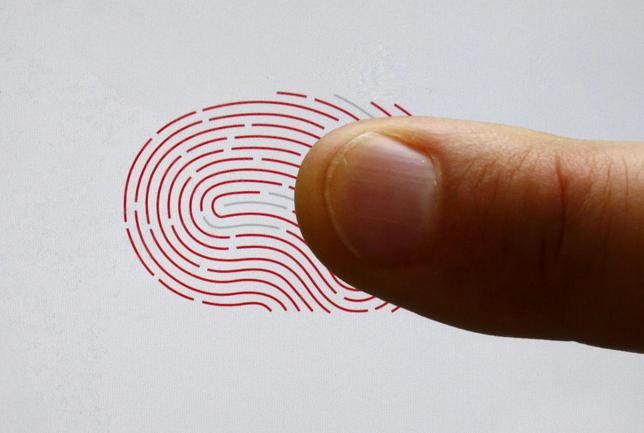 A person uses a sensor for biometric identification on a smartphone in Berlin, Germany, in this October 16, 2015 file photo. REUTERS/Fabrizio Bensch/Files