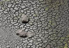 Cracked soil at Manjara Dam is seen in Osmanabad,  April 17, 2016. REUTERS/Danish Siddiqui