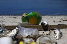 Peixes mortos e lixo na Baía de Guanabara, no Rio de Janeiro. 24/2/2015. REUTERS/Ricardo Moraes