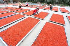 Workers dry wolfberries at a yard in Linze, Gansu Province, China, July 13, 2016. REUTERS/Stringer