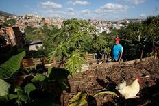 Alirio Ovalles walks at his family urban garden in Caracas, Venezuela June 27, 2016. Picture taken June 27, 2016. REUTERS/Mariana Bazo