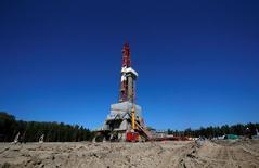 Буровая вышка на нефтяном месторождении Приразломное недалеко от Нефтеюганска. Цены на нефть отошли от пятинедельных максимумов на утренних торгах в среду на фоне сомнений аналитиков в успехе возможных переговоров стран-производителей по вопросу ограничения добычи для стабилизации рынка.  REUTERS/Sergei Karpukhin