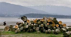 A pile of cut logs sit on Spanish Banks in Vancouver, British Columbia April 26, 2006. REUTERS/Andy Clark