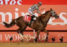 Horse Racing - Dubai World Cup - Meydan Racecourse, Dubai - 26/3/16 - Victor Espinoza rides California Chrome from USA, to the finish line to win the ninth and final race. REUTERS/Ashraf Mohammad