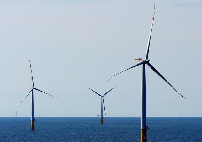 11月16日、次期米大統領に選出されたドナルド・トランプ氏は、エネルギー政策に石炭や石油など化石燃料への回帰を掲げているが、投資家やアナリストは今後も再生可能エネルギーセクターの成長が続くと予想している。写真はデンマークで9月撮影(2016年 ロイター/Nikolaj Skydsgaard)
