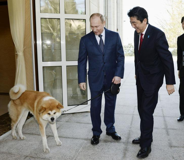 Russian President Vladimir Putin and his dog named Yume, which was presented to Putin by Japan's northern Akita Prefecture in July 2012, welcome Japanese Prime Minister Shinzo Abe upon Abe's arrival for their meeting in Sochi, Russia, in this photo taken by Kyodo February 8, 2014. Mandatory credit Kyodo/via REUTERS/Files