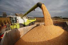 La valeur de la production agricole a nettement diminué en France cette année en chutant de 6,9% par rapport à 2015. /Photo d'archives/REUTERS/Pascal Rossignol