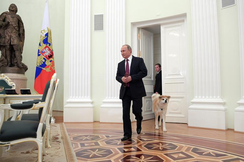 Russian President Vladimir Putin enters a hall with his dog Yume, a female Akita Inu, before giving an interview to Japanese Nippon Television and Yomiuri newspaper at the Kremlin in Moscow, Russia. Sputnik/Kremlin/Alexei Druzhinin via REUTERS