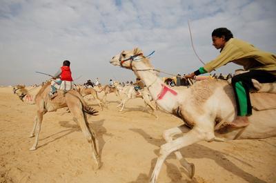 The child jockeys of camel racing