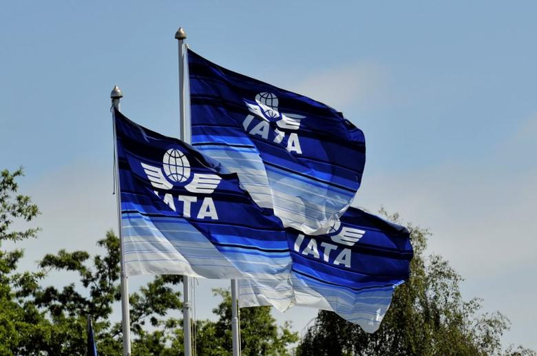 Flags are seen at the 2016 International Air Transport Association (IATA) Annual General Meeting (AGM) and World Air Transport Summit in Dublin, Ireland June 1, 2016. REUTERS/Clodagh Kilcoyne/Files