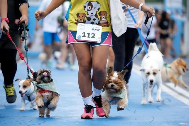 5月7日、ペットの犬と共に1.7キロを走る慈善目的のマラソン大会がバンコクで開催された(2017年 ロイター/Jorge Silva)