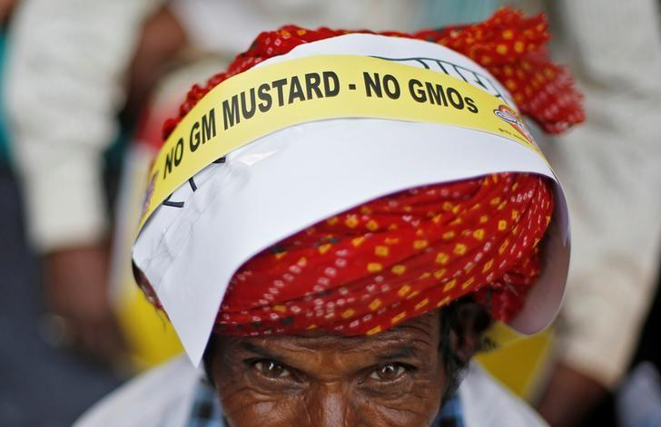 A farmer attends a protest against what they say is India's plan to allow genetically modified (GM) mustard crop, in New Delhi, India, October 25, 2016. REUTERS/Adnan Abidi/Files