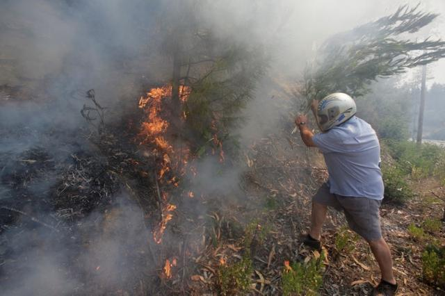 A man wears a helmet as he uses a branch with leaves to try to put out flames from a forest fire in Castanheira de Pera, Portugal, June 20, 2017. REUTERS/Miguel Vidal