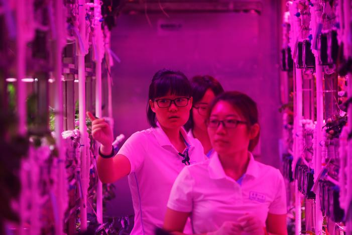 Volunteers check on plants inside a simulated space cabin in which they temporarily live as a part of the scientistic Lunar Palace 365 Project, at Beihang University in Beijing, China July 9, 2017. Damir Sagolj