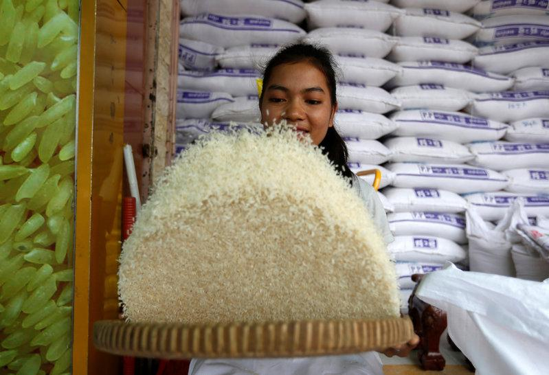 Cambodia rice exports rise 7 6 percent in Jan-June