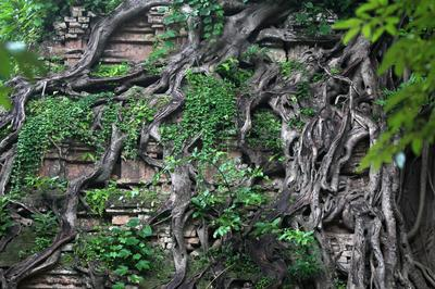 Cambodian temple joins UNESCO list