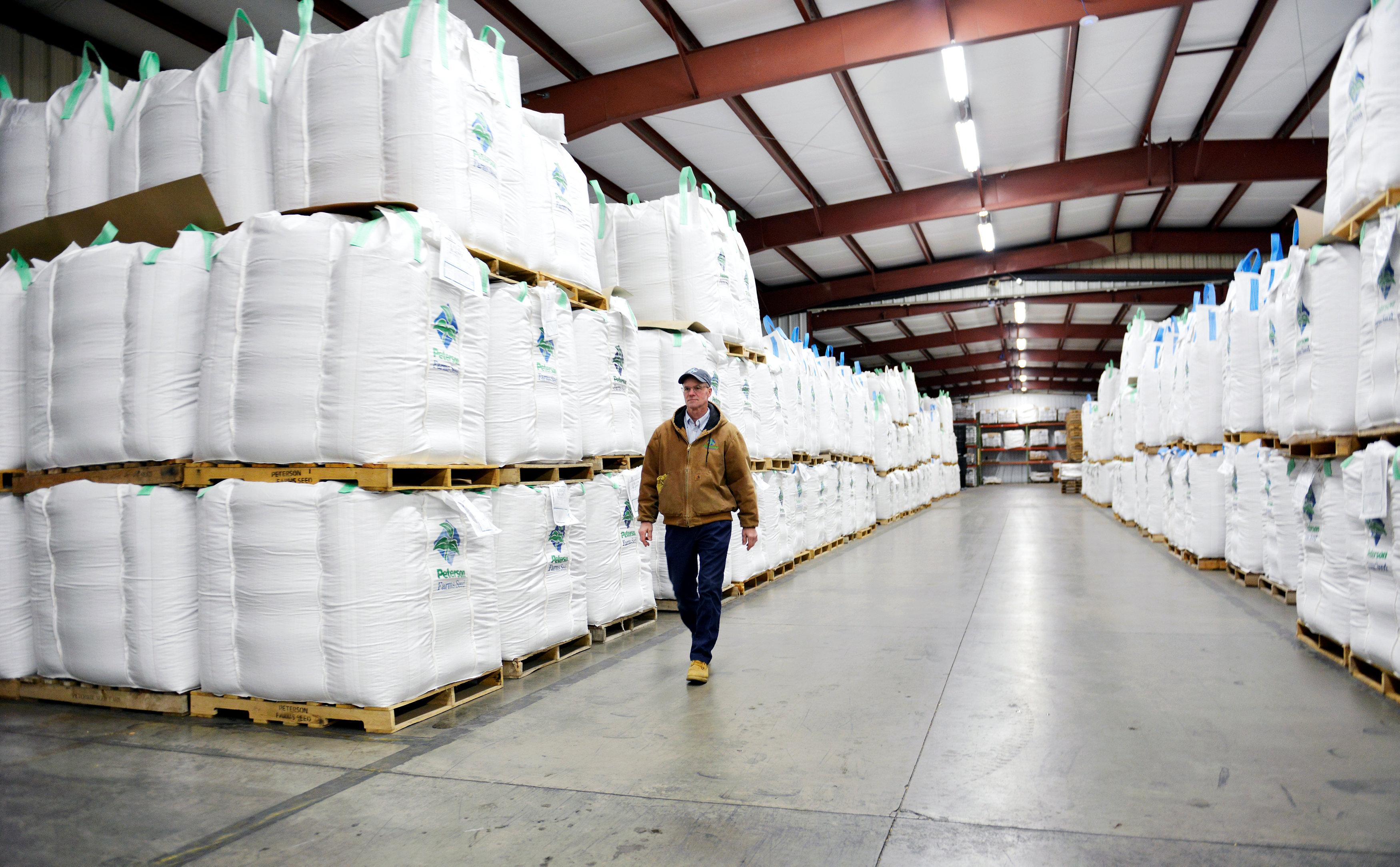 Battle of the beans: Monsanto faces a fight for soy market