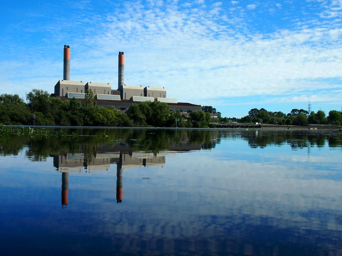 New Zealand Push On Clean Power Comes With High Political