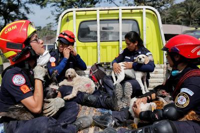 Guatemala's Fuego volcano erupts
