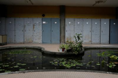Dying botanical garden highlights Venezuela's decay