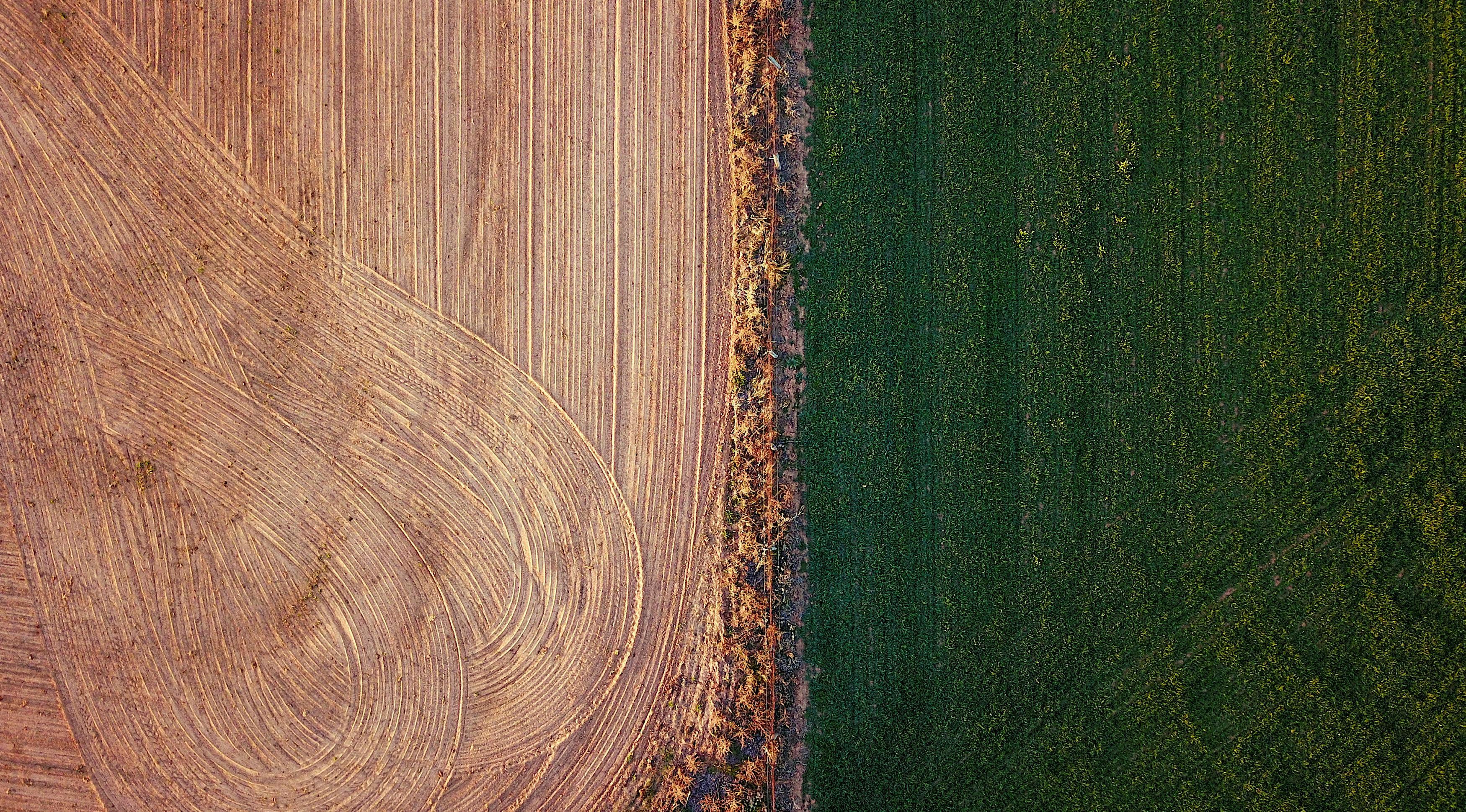 essay on farming in my town