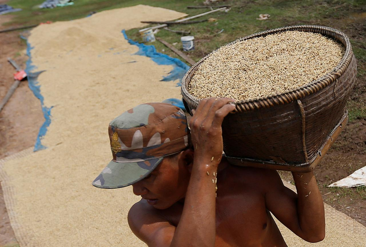 EU tariffs on Myanmar, Cambodia rice unclear after EU