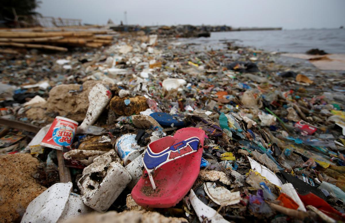 プラゴミなど海洋汚染の対策提言、G20に向け=科学アカデミー