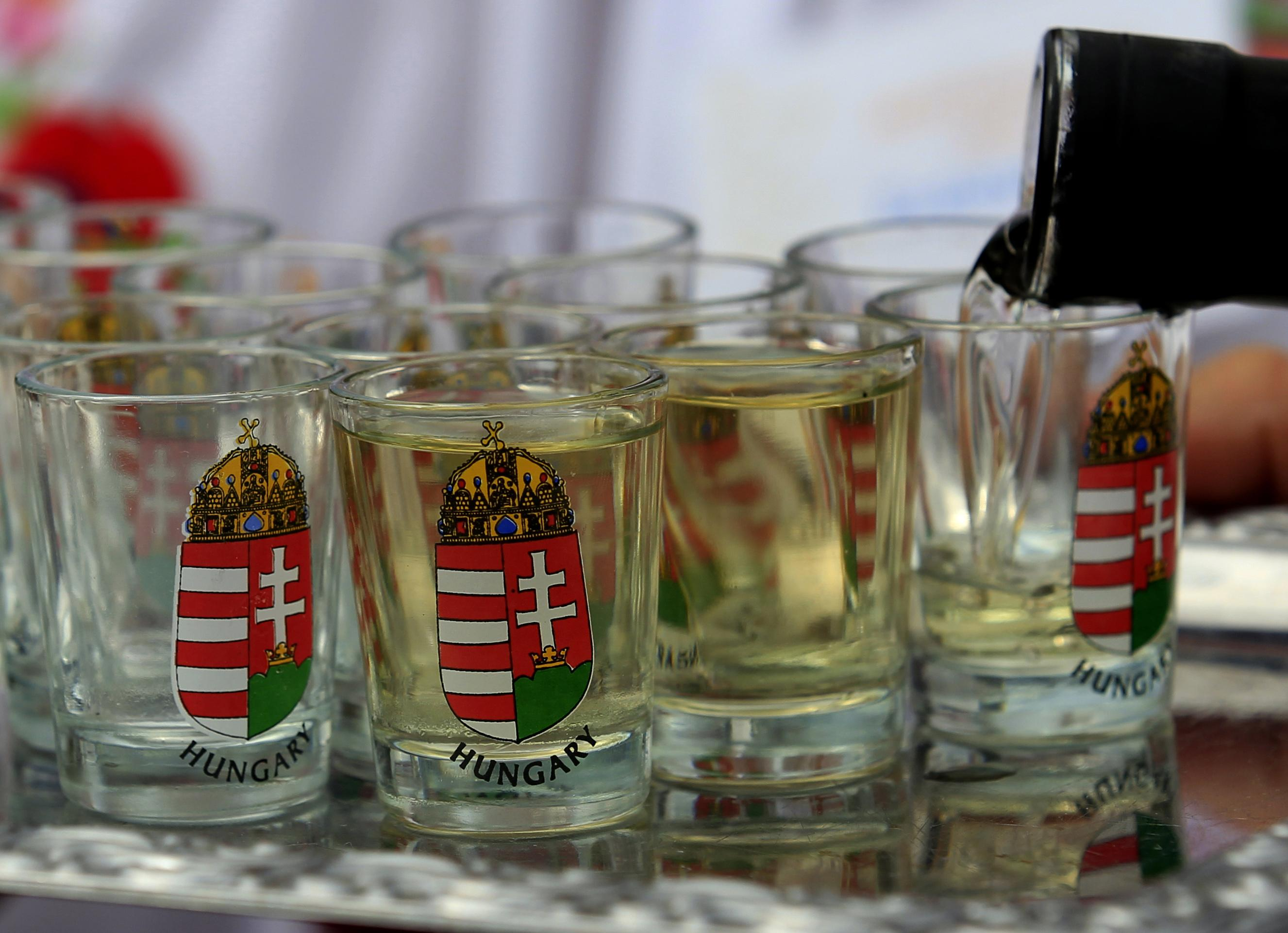 To your health! Romania, Hungary push for brandy rights ahead of EU vote