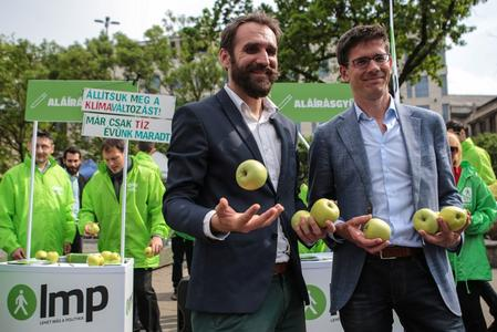 Surfing the Green wave? Climate party hopes ride high in EU vote