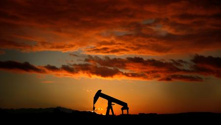 Oil prices fall as market awaits G20, OPEC
