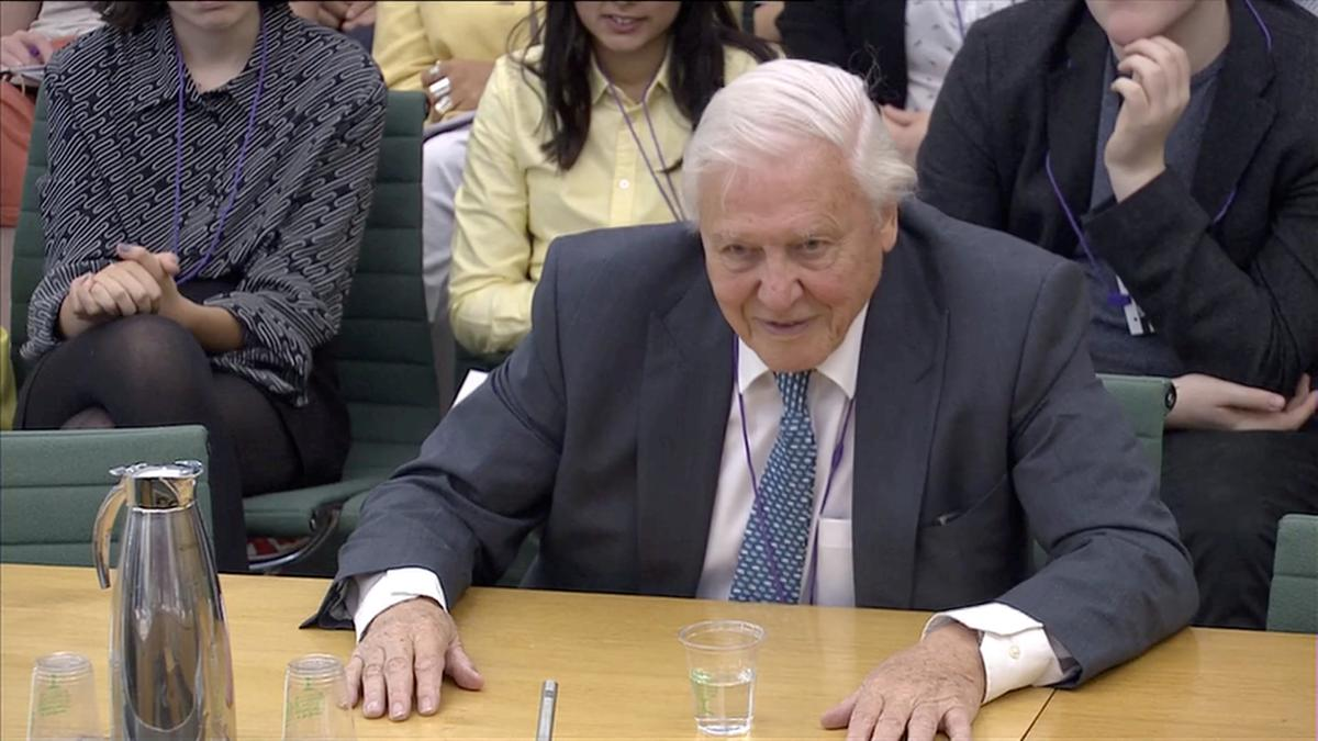 David Attenborough warns climate change may bring social unrest