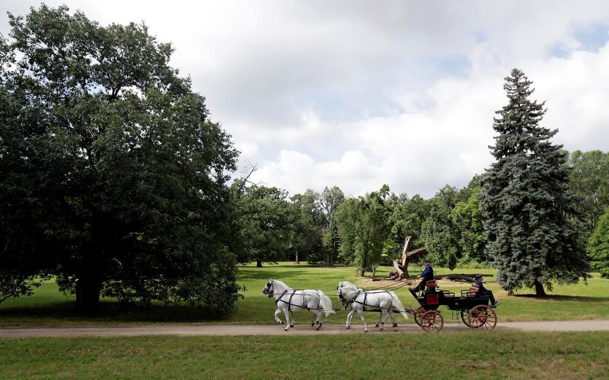 Habsburg stud farm rides to UNESCO world heritage status; Robert Muller & Jiri Skacel; Reuters