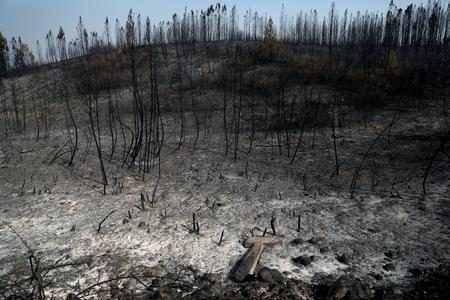Portuguese fires under partial control, weather raises concerns