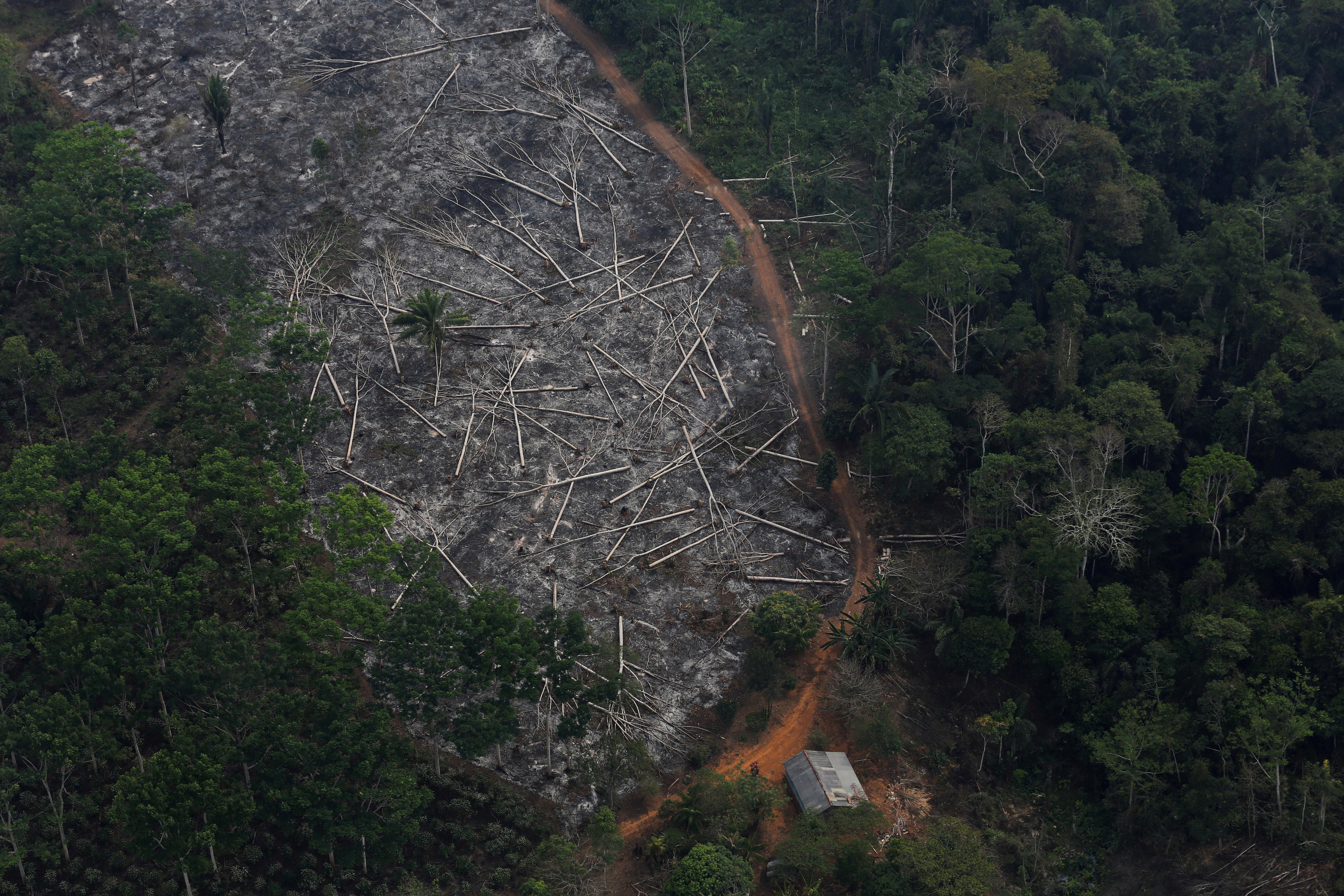 Brazil space research chief to leave job after Bolsonaro deforestation spat