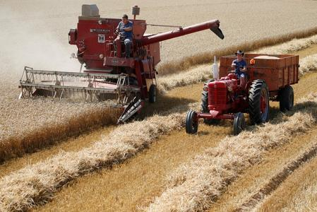 EU wheat harvest well advanced as heatwave enabled rapid work