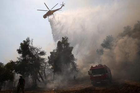 Fire resurges on Greece's Evia, challenges firefighters