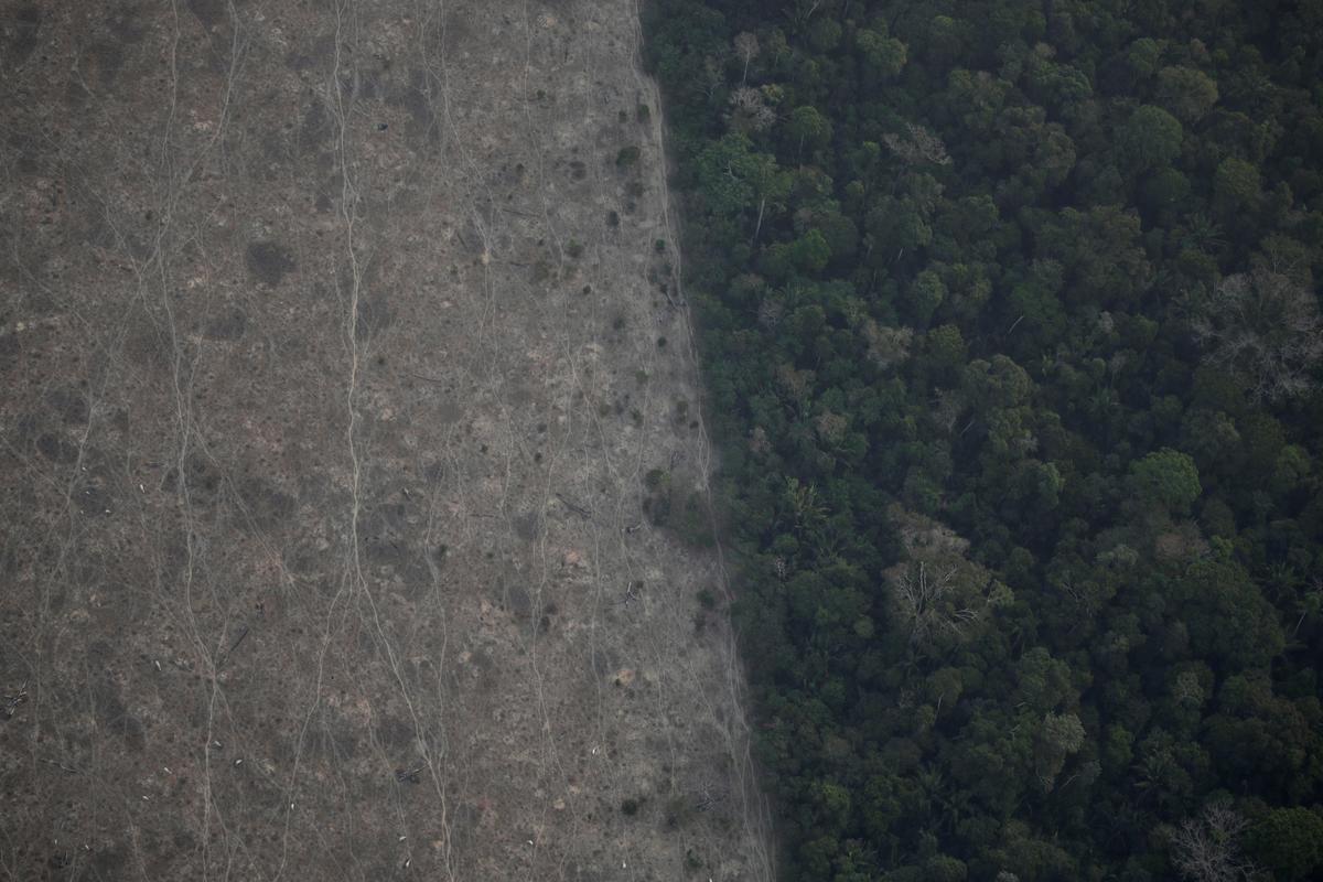 Bolsonaro sê Brasilië het nie hulpbronne om die brande van Amazon te beveg nie
