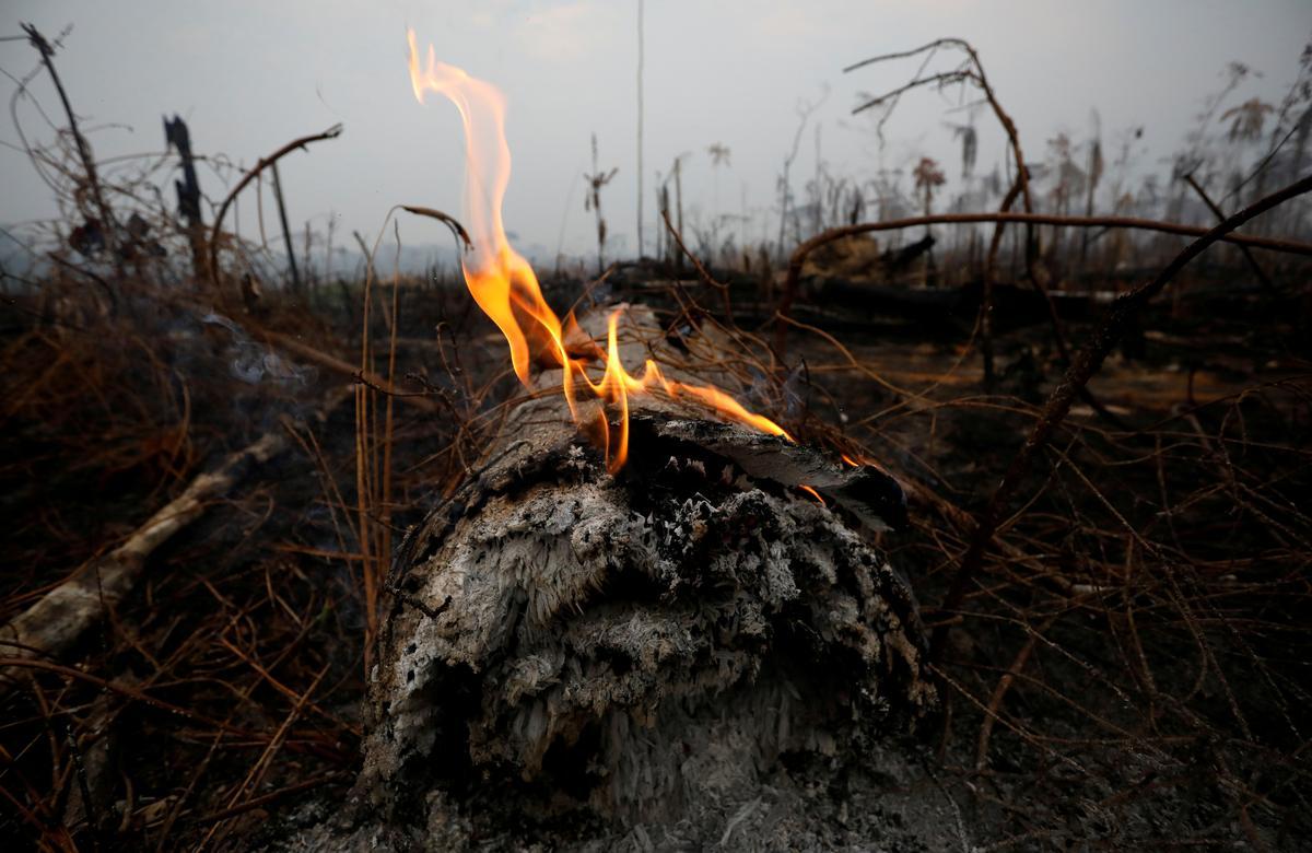 Brasiliaanse state vra militêre hulp namate Amazon-brande woed