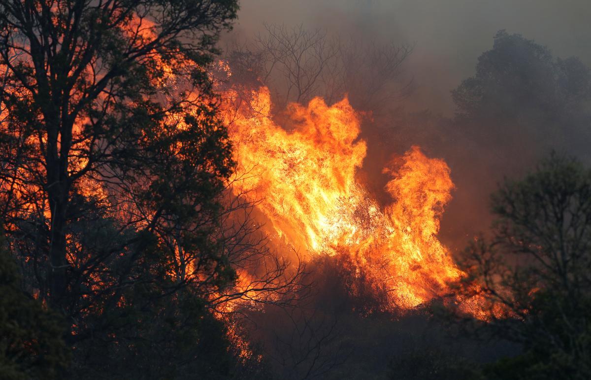 Australia's east coast battles more than 100 bushfires, 21 homes destroyed