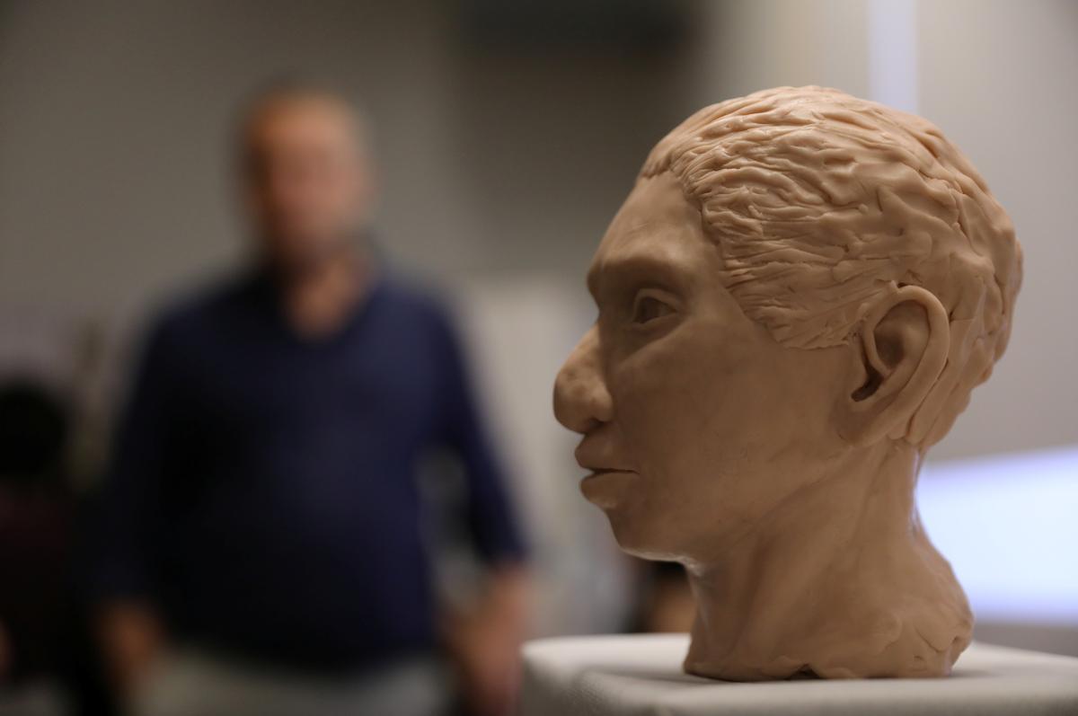 Wetenskaplikes rekonstrueer geraamte van ontwykende, voor-historiese mens