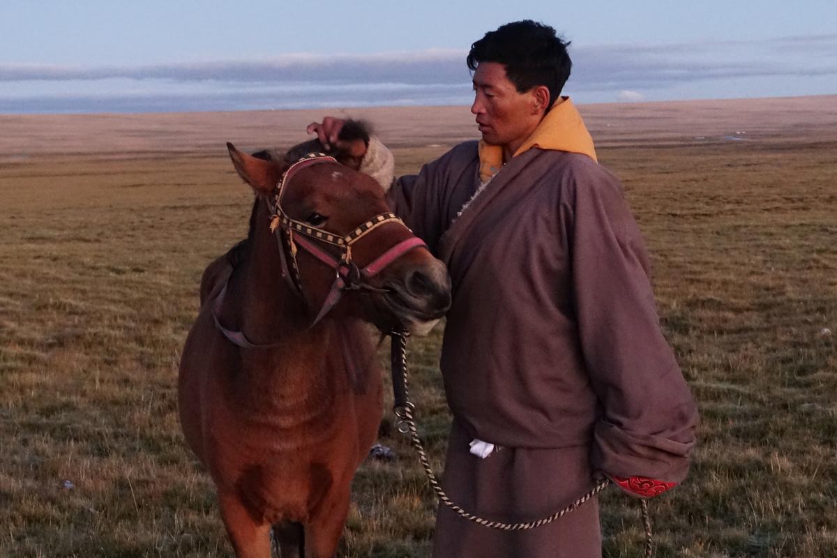 Terwyl China die ekologiese toekoms bewerk, prys Tibetane die nomadiese verlede af