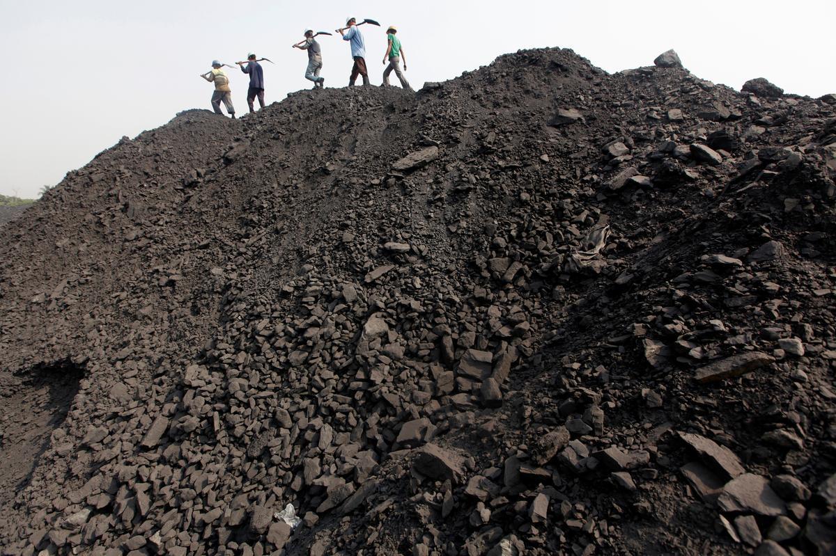 'N Bok kan jou kos: Steenkool-Indië stop werk terwyl die plaaslike bevolking oor die dood van diere veg