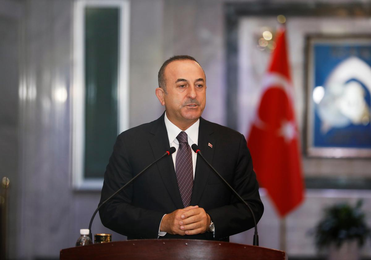 Turkish minister says France's Macron wants to divide Syria