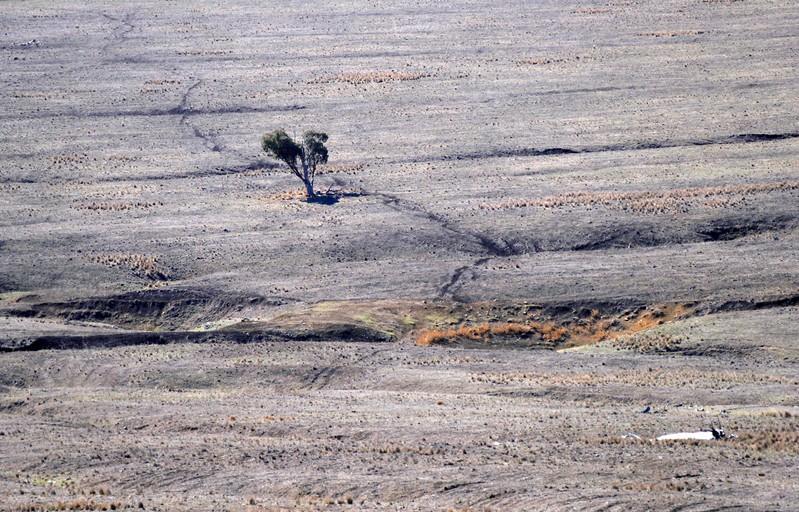 Australia to invest $680 million in dams for drought-stricken region