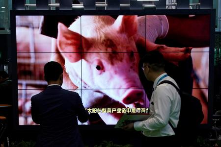 China's pork imports to peak in 2022, driven by fatal swine fever -consultancy