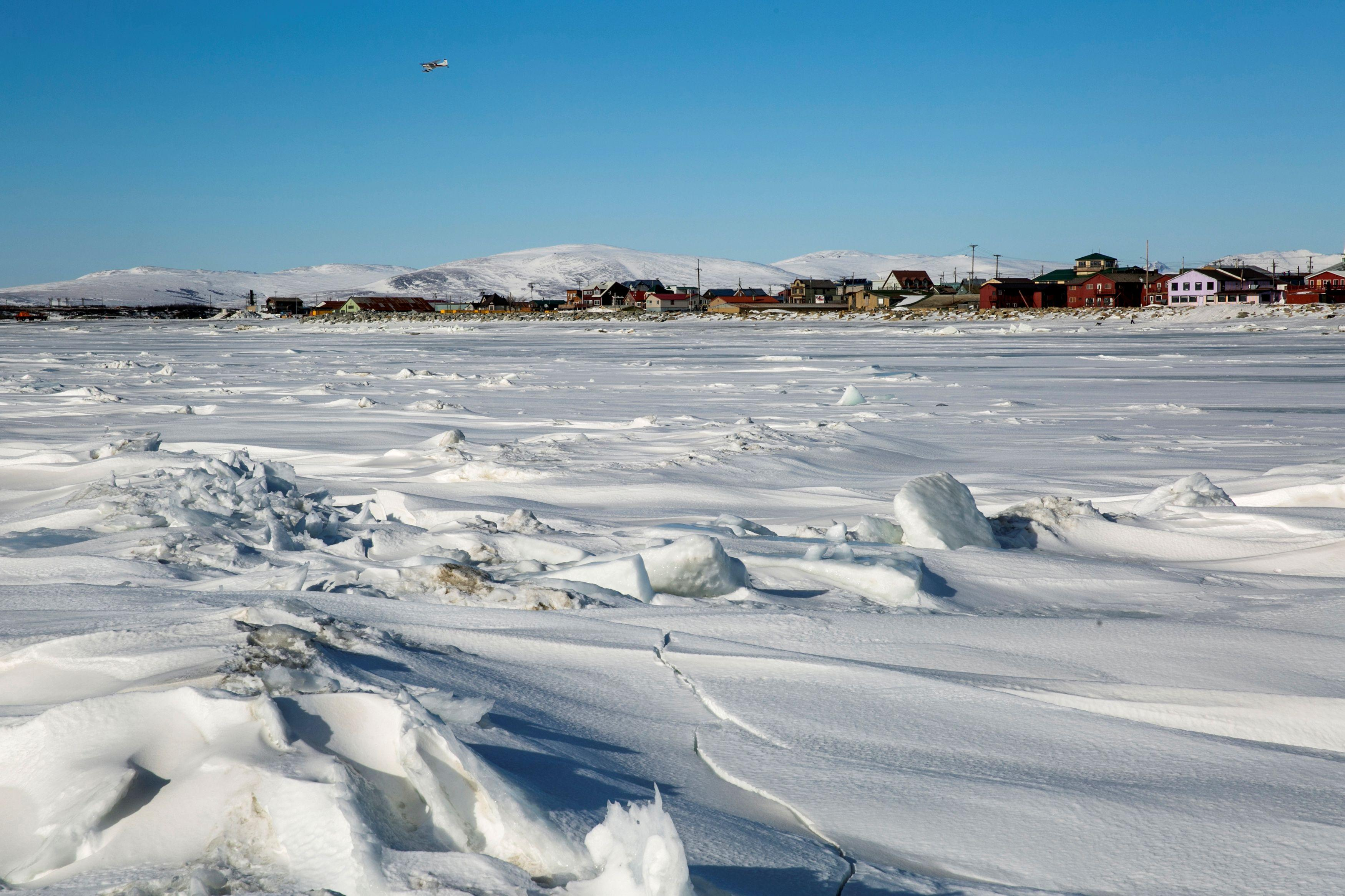 Climate change hitting top U.S. fishery in the Arctic: NOAA