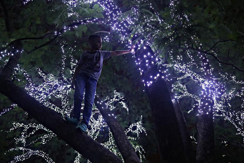 Un niño juega en un árbol decorado con luces navideñas en el Parque Ibirapuera en Sao Paulo, Brasil, 20 de diciembre de 2019. REUTERS / Amanda Perobelli